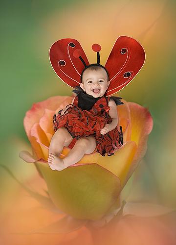 Ashlyn, Little Miss Lady Bug