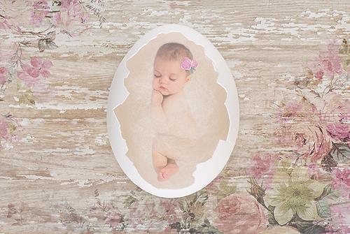 Baby Sleeping in an Eggshell