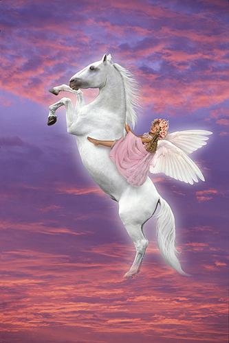 Allie, Spirited Angel