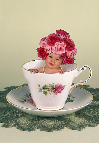 Leah, Sweet Summer Rose