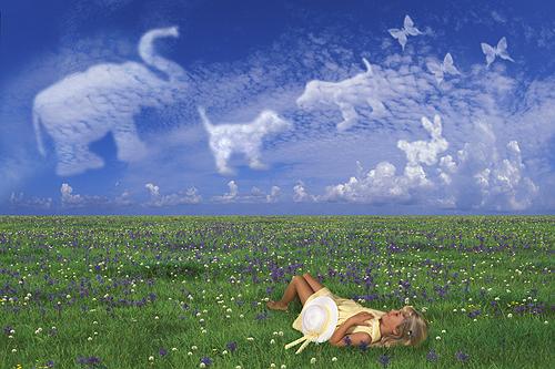 Taylor, Cloud Fantasy