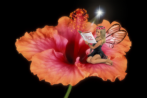 Brianne, The Wise Hibiscus Fairy