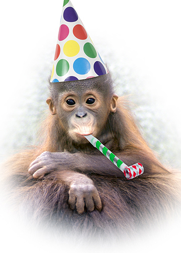 Best 25 Happy birthday illustration ideas on Pinterest
