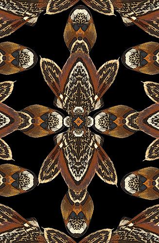 Nature Design-28 Pheasant