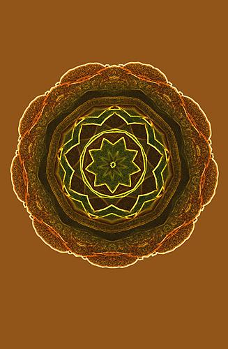 Nature Design-14 Rose