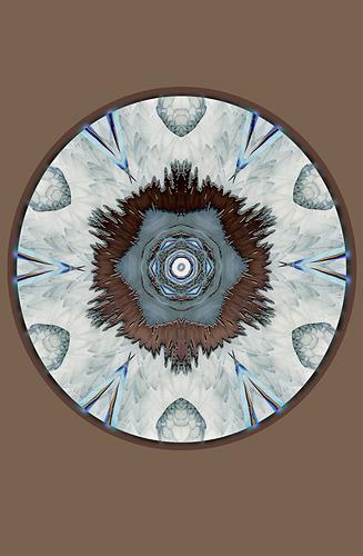 Nature Design-16 Bald Eagle