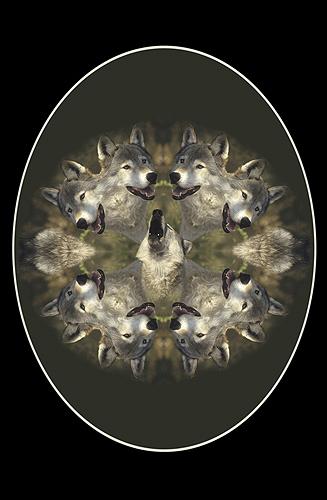 Nature Design-17 Wolf