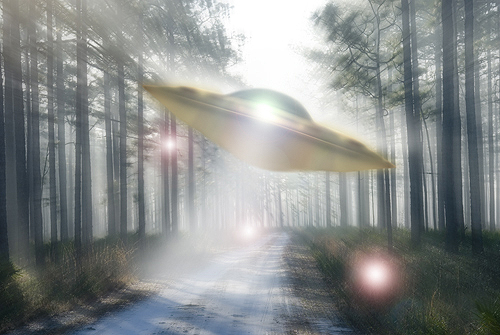 UFO Zooming Through a Forest