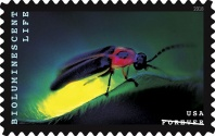 2018 Bioluminescent Life USA Postage Stamp