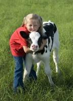 Leah's Baby Calf