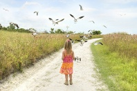 Hayden and the Seagulls, Siesta Key Beach