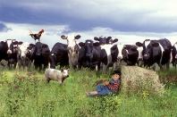 Edgar, Fun on the Farm