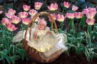 Leah, Grandma's Pink Tulips
