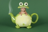 Hayden, Froggy Teapot