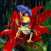 Stephen, Keeping Dry in the Rainforest