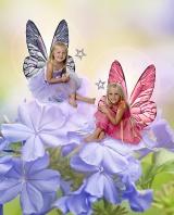 Leah and Sarah, Fairy Dust