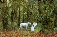 Catherine, Mystical Forest