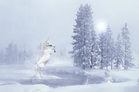 Unicorn in the Snow