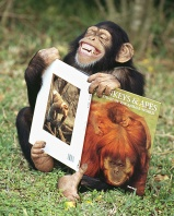 Chimpanzee Having a Good Laugh After Looking at His Primate Book