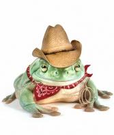 Cowboys Rule