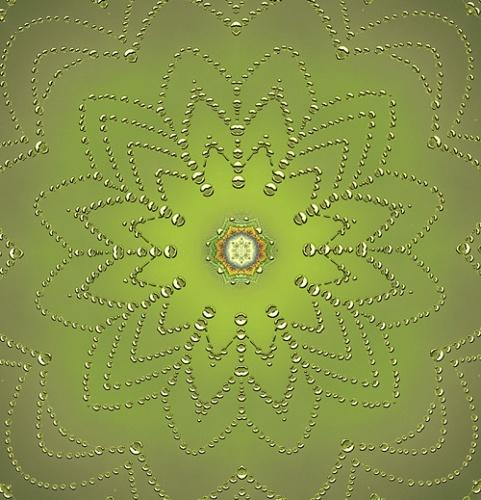 Nature Design-7 Spider Web